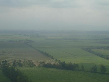 Palmira (Valle del Cauca) Image